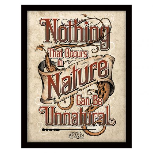 Fantastic Beasts Framed Picture - Nature - 16 x 12